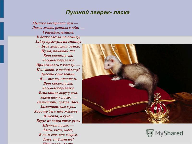 Мышка выстроила дом Ласка жить решила в нём: Убирайся, мышка, К белке влезла на осинку, Зайцу прыгнула на спинку: Будь лошадкой, зайка, Ну-ка, покатай-ка! Вот какая ласка, Ласка-всюдувлазка. Прицепилась к косачу: Полетать с тобой хочу! Будешь самолёт