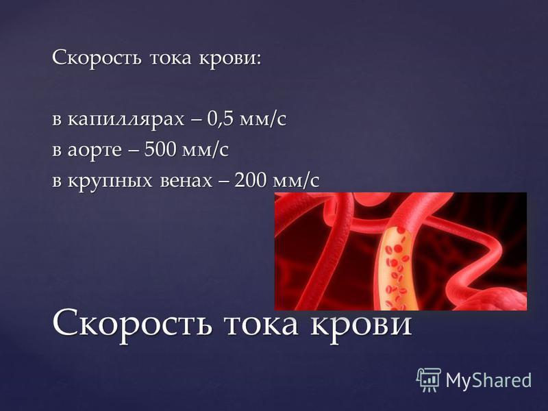 Скорость тока крови: в капиллярах – 0,5 мм/с в аорте – 500 мм/с в крупных венах – 200 мм/с Скорость тока крови