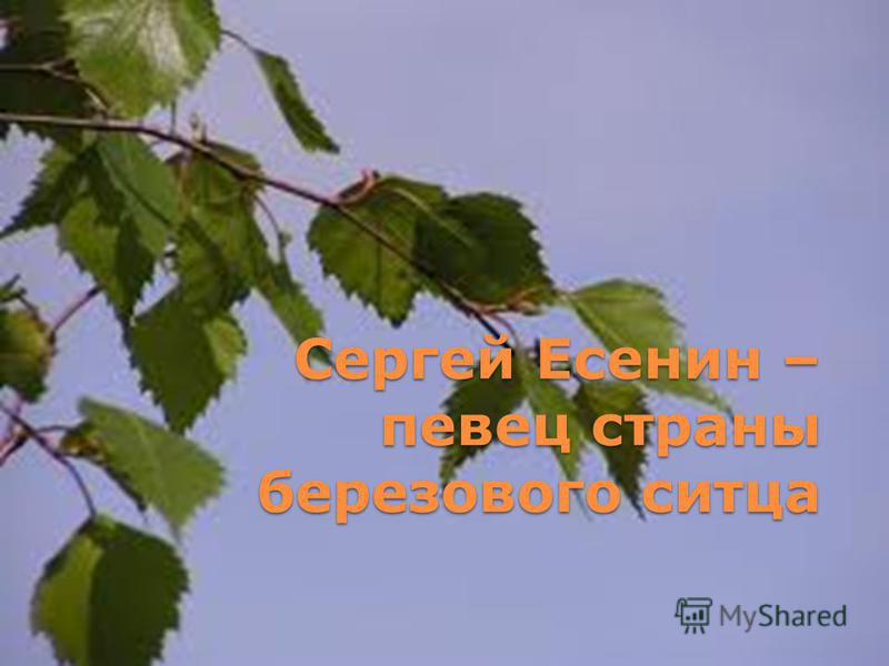 Сергей Есенин – певец страны березового ситца