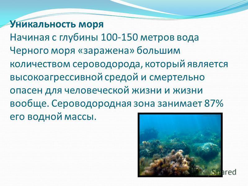 Уникальность моря Начиная с глубины 100-150 метров вода Черного моря «заражена» большим количеством сероводорода, который является высоко агрессивной средой и смертельно опасен для человеческой жизни и жизни вообще. Сероводородная зона занимает 87% е