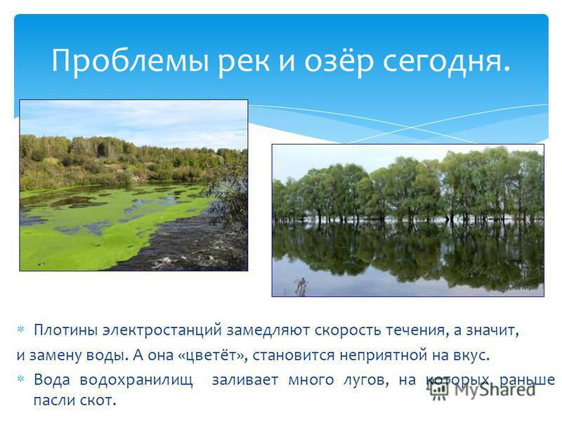 Плотины электростанций замедляют скорость течения, а значит, и замену воды. А она «цветёт», становится неприятной на вкус. Вода водохранилищ заливает много лугов, на которых раньше пасли скот. Проблемы рек и озёр сегодня.