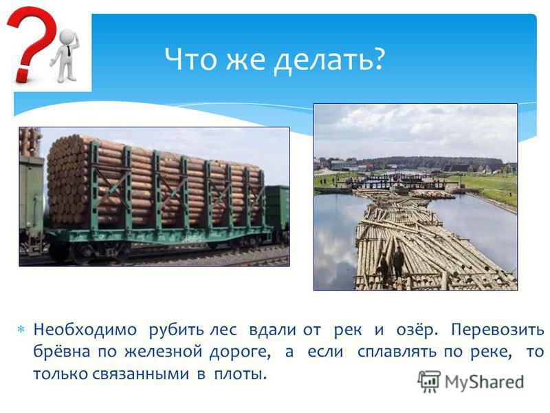 Необходимо рубить лес вдали от рек и озёр. Перевозить брёвна по железной дороге, а если сплавлять по реке, то только связанными в плоты. Что же делать?