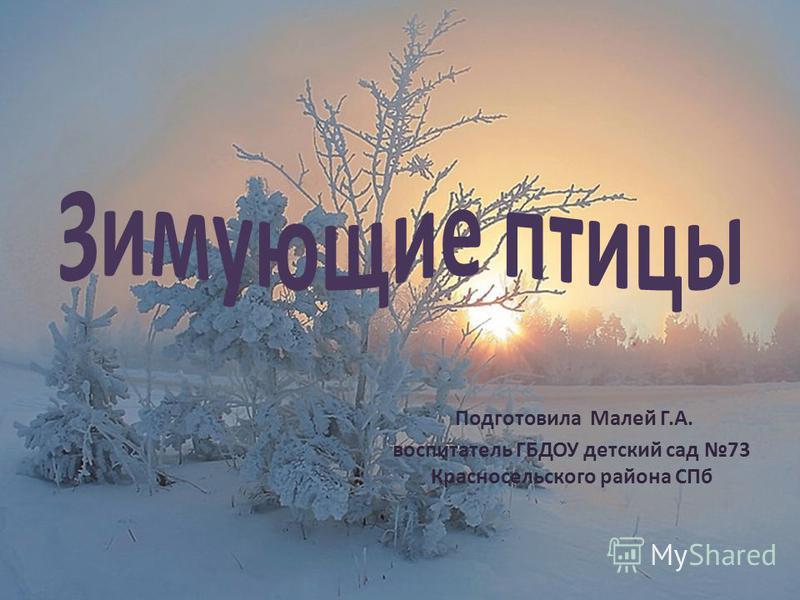 Подготовила Малей Г.А. воспитатель ГБДОУ детский сад 73 Красносельского района СПб