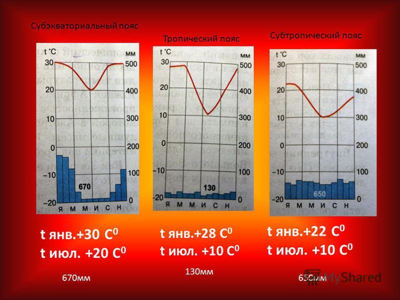 t янв.+28 С 0 t июлььь. +10 С 0 t янв.+30 С 0 t июлььь. +20 С 0 t янв.+22 С 0 t июлььь. +10 С 0 130 мм 670 мм 650 мм Тропический пояс Субэкваториальный пояс Субтропический пояс