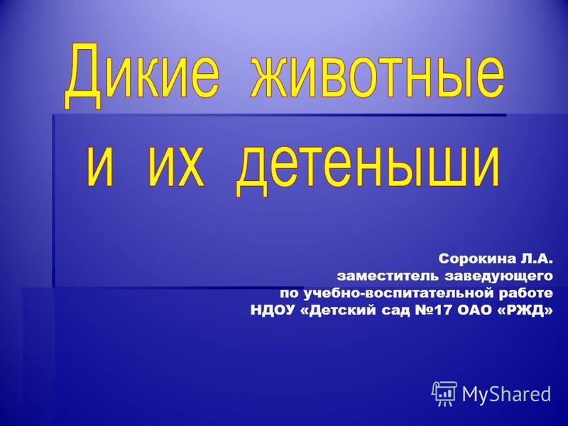 Сорокина Л.А. заместитель заведующего по учебно-воспитательной работе НДОУ «Детский сад 17 ОАО «РЖД»
