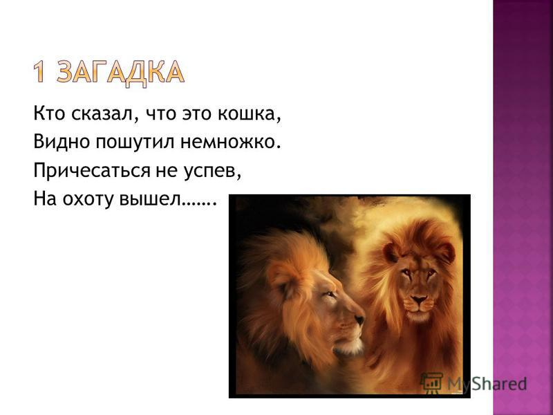 Кто сказал, что это кошка, Видно пошутил немножко. Причесаться не успев, На охоту вышел…….