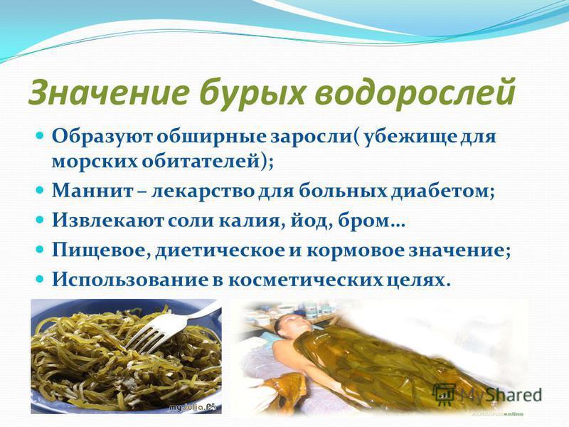 Значение бурых водорослей Образуют обширные заросли( убежище для морских обитателей); Маннит – лекарство для больных диабетом; Извлекают соли калия, йод, бром… Пищевое, диетическое и кормовое значение; Использование в косметических целях.