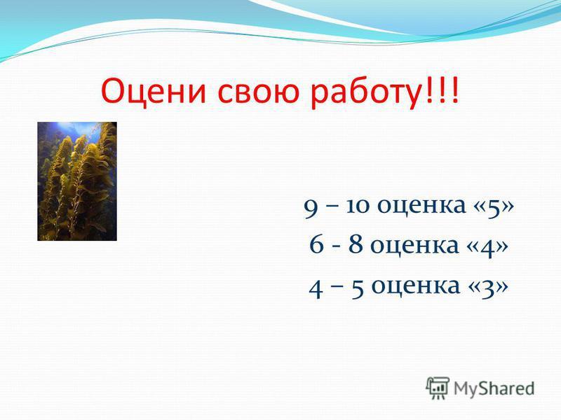Оцени свою работу!!! 9 – 10 оценка «5» 6 - 8 оценка «4» 4 – 5 оценка «3»