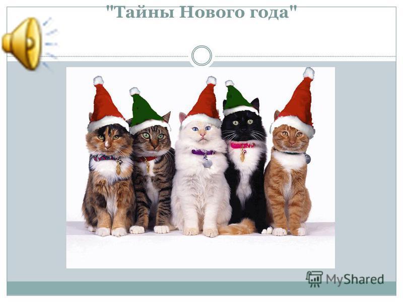 Тайны Нового года
