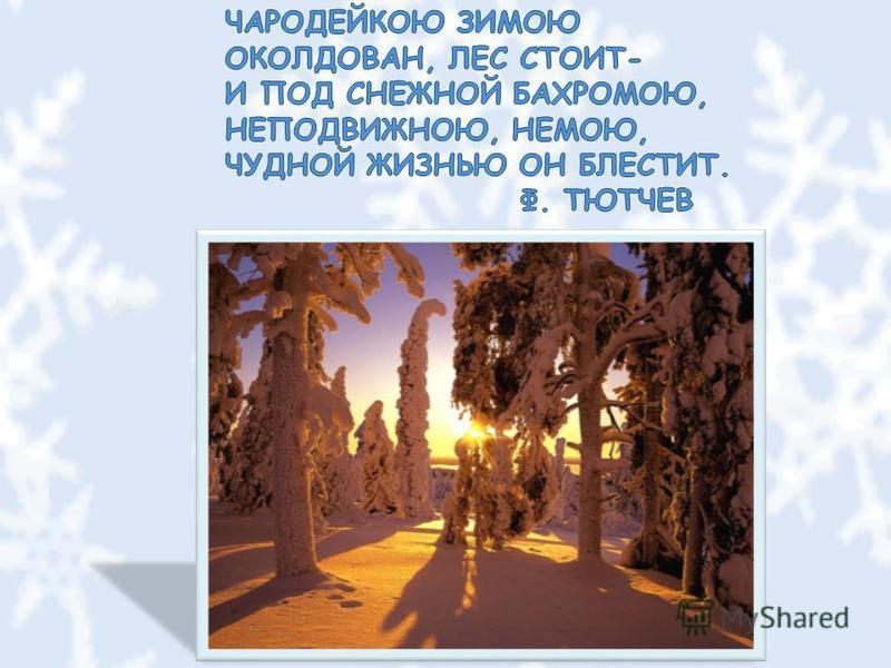 Презентация окружающий мир 1 класс на тему зима