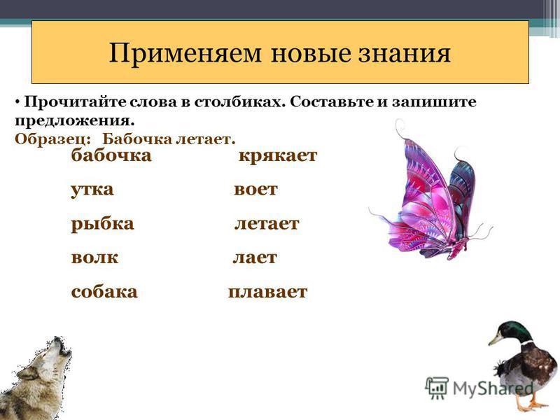 Применяем новые знания Прочитайте слова в столбиках. Составьте и запишите предложения. Образец: Бабочка летает. бабочка крякает утка воет рыбка летает волк лает собака плавает