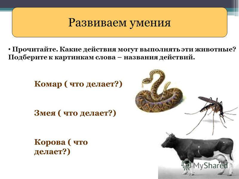 Развиваем умения Прочитайте. Какие действия могут выполнять эти животные? Подберите к картинкам слова – названия действий. Комар ( что делает?) Змея ( что делает?) Корова ( что делает?)
