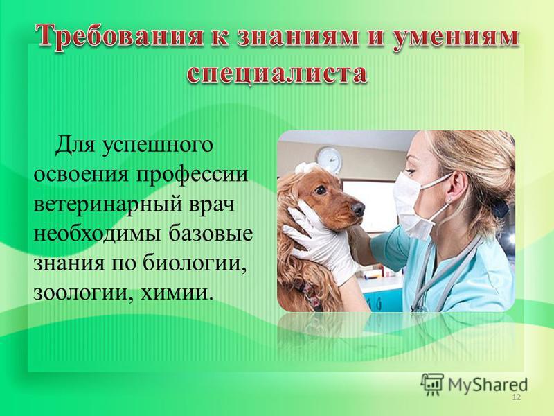 Для успешного освоения профессии ветеринарный врач необходимы базовые знания по биологии, зоологии, химии. 12