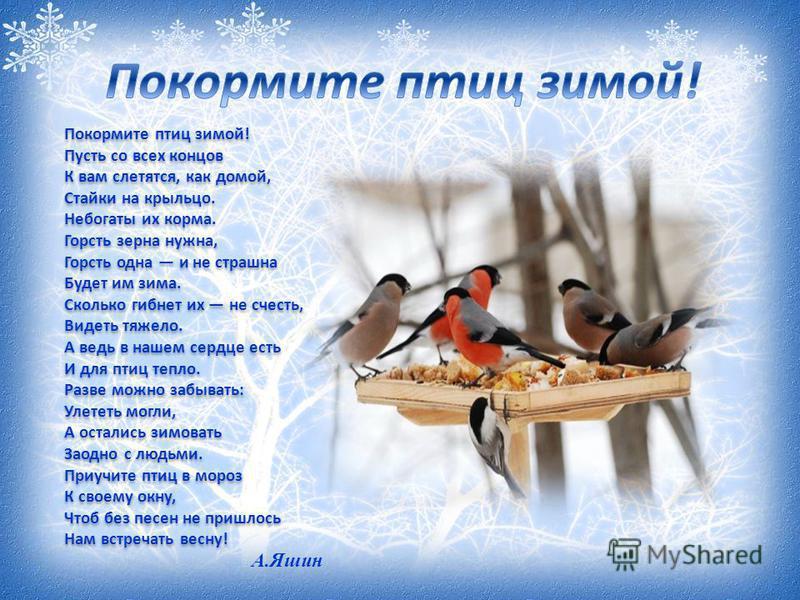 Покормите птиц зимой! Пусть со всех концов К вам слетятся, как домой, Стайки на крыльцо. Небогаты их корма. Горсть зерна нужна, Горсть одна и не страшна Будет им зима. Сколько гибнет их не счесть, Видеть тяжело. А ведь в нашем сердце есть И для птиц