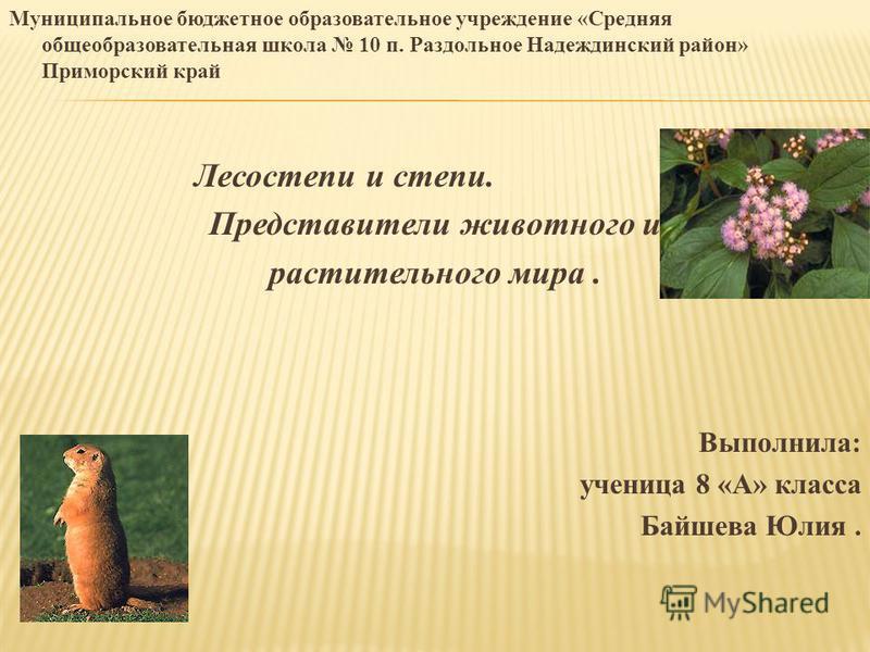 Юлия надеждинская скачать книги бесплатно