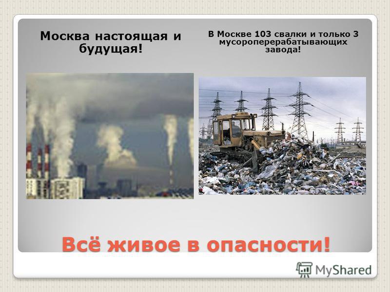 Всё живое в опасности! Москва настоящая и будущая! В Москве 103 свалки и только 3 мусороперерабатывающих завода!