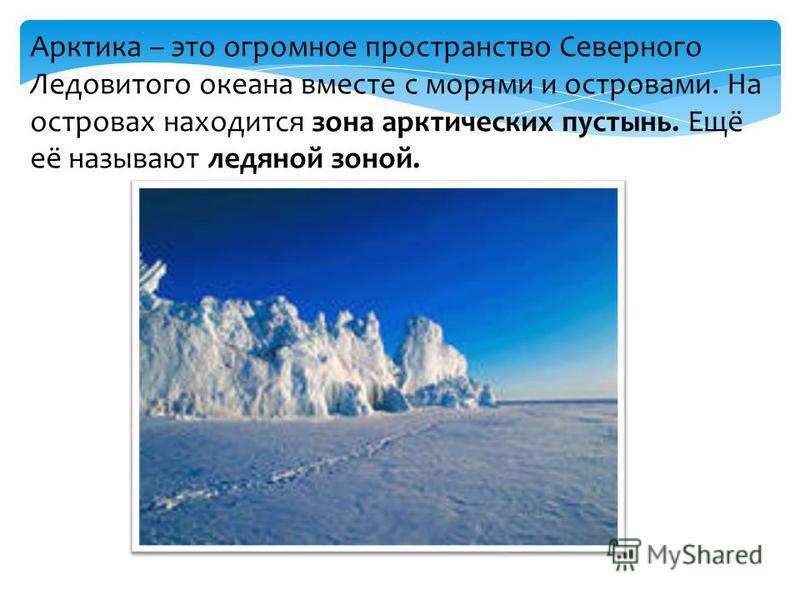 Арктика – это огромное пространство Северного Ледовитого океана вместе с морями и островами. На островах находится зона арктических пустынь. Ещё её называют ледяной зоной.