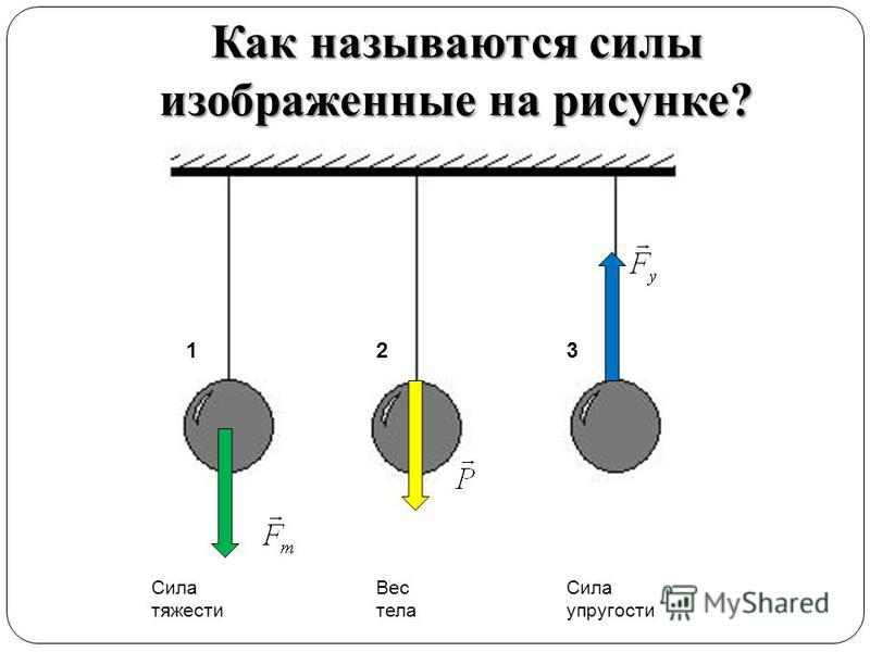 Как называются силы изображенные на рисунке? Сила тяжести Вес тела Сила упругости 123