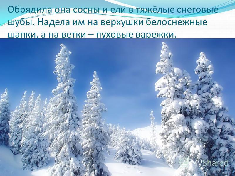 Обрядила она сосны и ели в тяжёлые снеговые шубы. Надела им на верхушки белоснежные шапки, а на ветки – пуховые варежки.