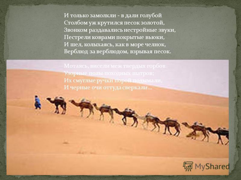 И только замолкли - в дали голубой Столбом уж крутился песок золотой, Звонком раздавались нестройные звуки, Пестрели коврами покрытые вьюки, И шел, колыхаясь, как в море челнок, Верблюд за верблюдом, взрывая песок. Мотаясь, висели меж твердых горбов