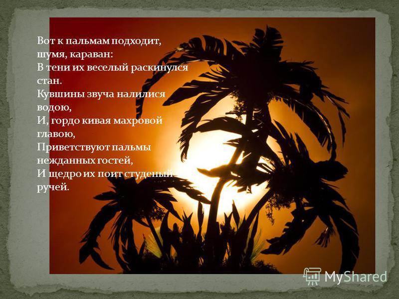 Вот к пальмам подходит, шумя, караван: В тени их веселый раскинулся стан. Кувшины звуча налилися водою, И, гордо кивая махровой главою, Приветствуют пальмы нежданных гостей, И щедро их поит студеный ручей.