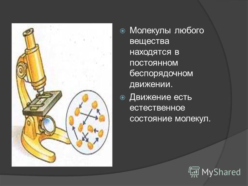 Молекулы любого вещества находятся в постоянном беспорядочном движении. Движение есть естественное состояние молекул.