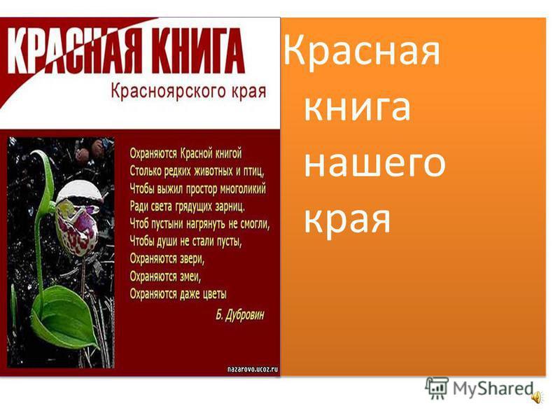 Проект россия книга 4 скачать