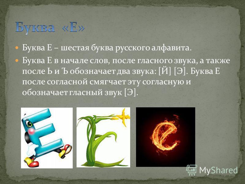 Буква Е – шестая буква русского алфавита. Буква Е в начале слов, после гласного звука, а также после Ь и Ъ обозначает два звука: [Й] [Э]. Буква Е после согласной смягчает эту согласную и обозначает гласный звук [Э].