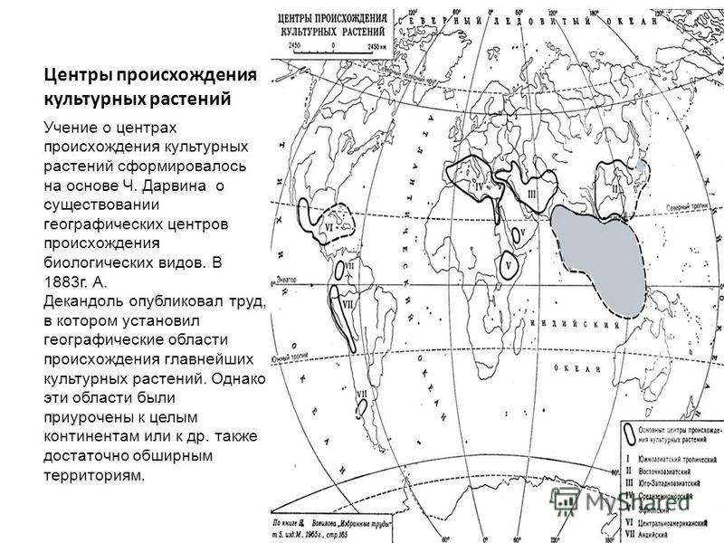 Центры происхождения культурных растений Учение о центрах происхождения культурных растений сформировалось на основе Ч. Дарвина о существовании географических центров происхождения биологических видов. В 1883 г. А. Декандоль опубликовал труд, в котор