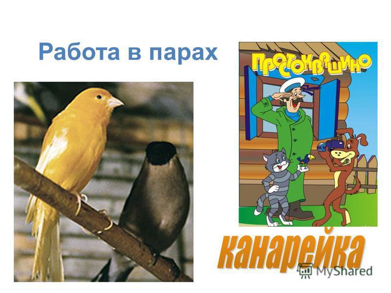 ЛЕЙ ЛЕЙКА СТАЙКА