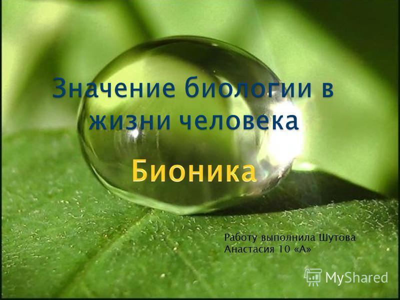 Работу выполнила Шутова Анастасия 10 «А»