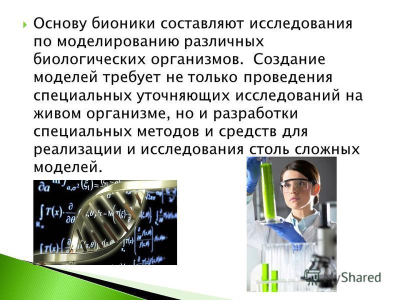 Основу бионики составляют исследования по моделированию различных биологических организмов. Создание моделей требует не только проведения специальных уточняющих исследований на живом организме, но и разработки специальных методов и средств для реализ