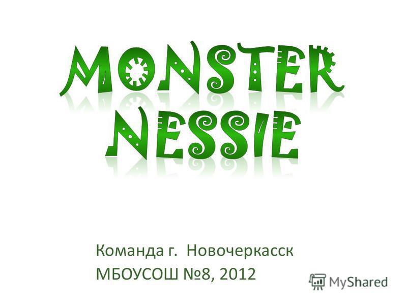 Команда г. Новочеркасск МБОУСОШ 8, 2012