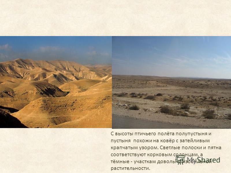 С высоты птичьего полёта полупустыня и пустыня похожи на ковёр с затейливым крапчатым узором. Светлые полоски и пятна соответствуют корковым солонцам, а тёмные - участкам довольно изобильной растительности.