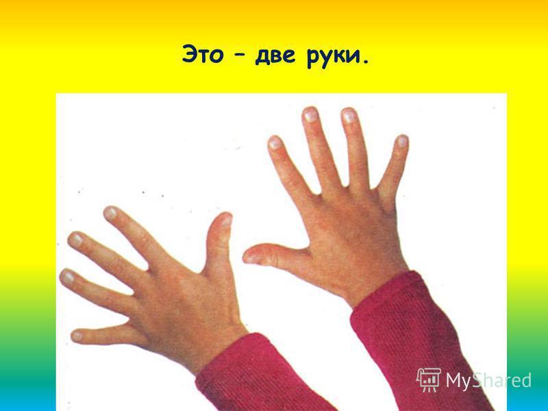 Это – две руки.