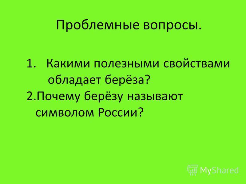 Проблемные вопросы. 1. Какими полезными свойствами обладает берёза? 2. Почему берёзу называют символом России?