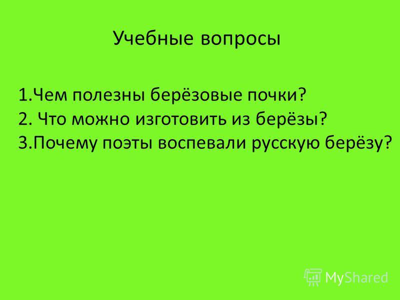 Учебные вопросы 1. Чем полезны берёзовые почки? 2. Что можно изготовить из берёзы? 3. Почему поэты воспевали русскую берёзу?