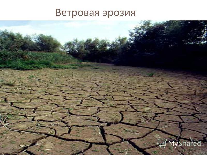 Ветровая эрозия