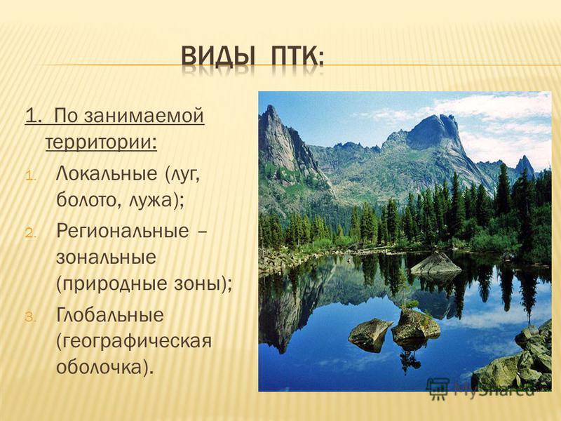 1. По занимаемой территории: 1. Локальные (луг, болото, лужа); 2. Региональные – зональные (природные зоны); 3. Глобальные (географическая оболочка).