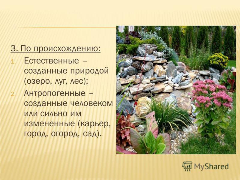 3. По происхождению: 1. Естественные – созданные природой (озеро, луг, лес); 2. Антропогенные – созданные человеком или сильно им измененные (карьер, город, огород, сад).