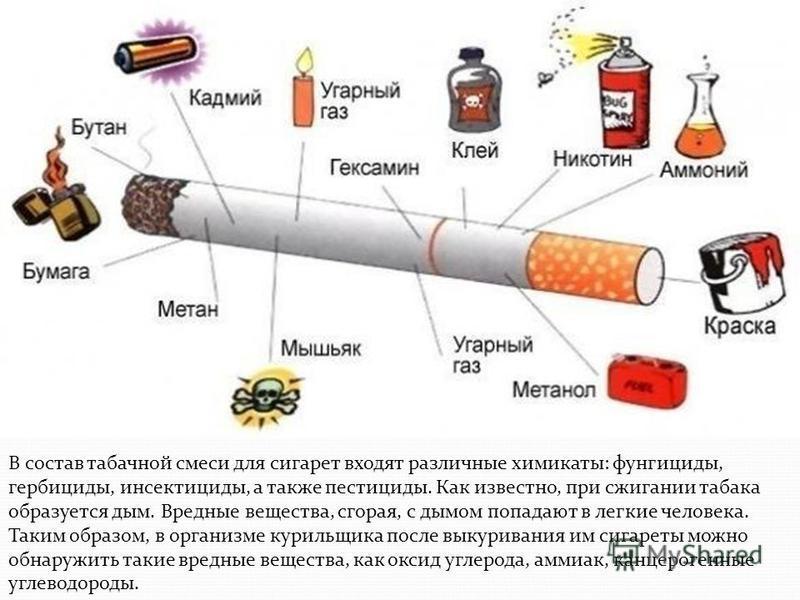 В состав табачной смеси для сигарет входят различные химикаты: фунгициды, гербициды, инсектициды, а также пестициды. Как известно, при сжигании табака образуется дым. Вредные вещества, сгорая, с дымом попадают в легкие человека. Таким образом, в орга