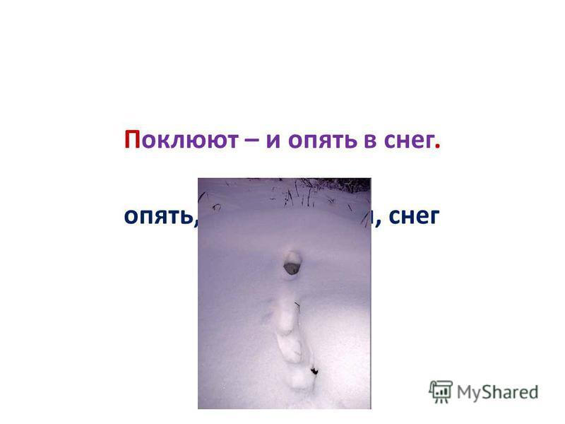 опять, поклюют, в, и, снег Поклюют – и опять в снег.