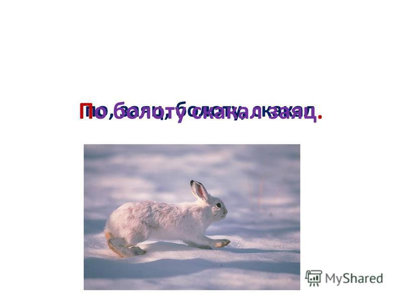по, заяц, болоту, скакал По болоту скакал заяц.