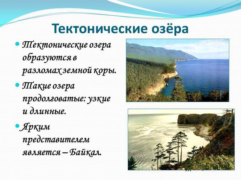 Тектонические озёра Тектонические озера образуются в разломах земной коры. Такие озера продолговатые: узкие и длинные. Ярким представителем является – Байкал.