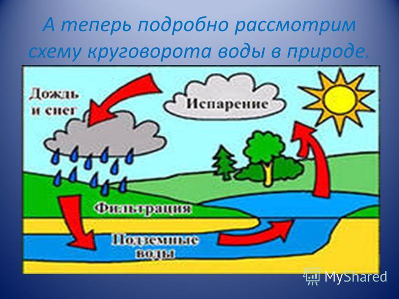 А теперь подробно рассмотрим схему круговорота воды в природе.