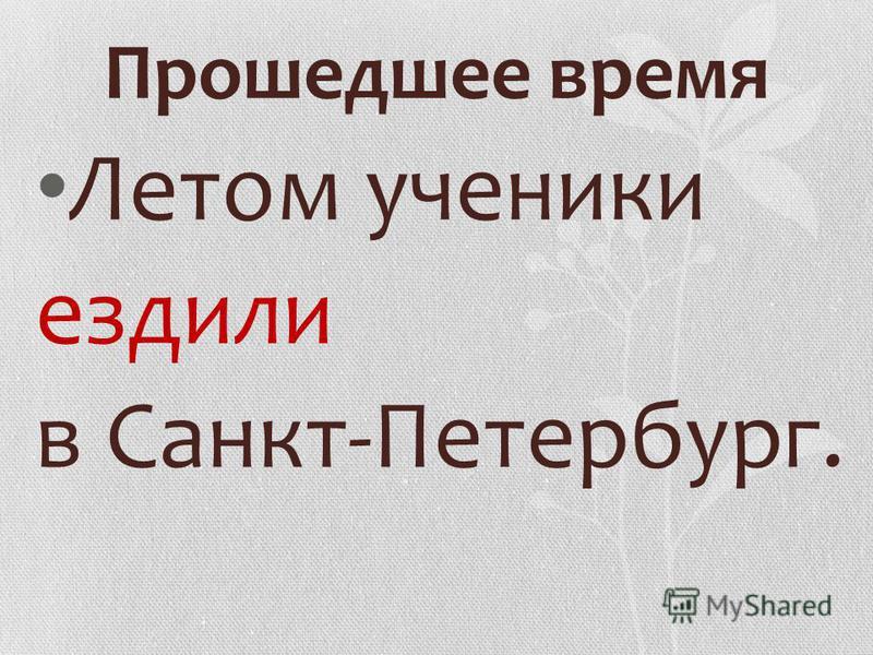 Летом ученики ездили в Санкт-Петербург.