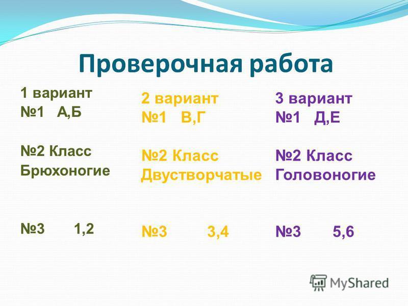 Проверочная работа 1 вариант 1 А,Б 2 Класс Брюхоногие 3 1,2 2 вариант 1 В,Г 2 Класс Двустворчатые 3 3,4 3 вариант 1 Д,Е 2 Класс Головоногие 3 5,6