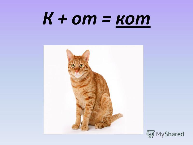 К + от = кот