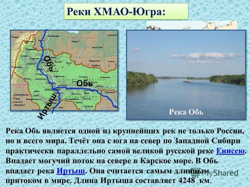 Реки ХМАО-Югра: Река Обь является одной из крупнейших рек не только России, но и всего мира. Течёт она с юга на север по Западной Сибири практически параллельно самой великой русской реке Енисею. Впадает могучий поток на севере в Карское море. В Обь