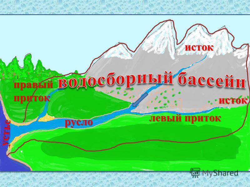 исток исток левый приток правый приток устье русло